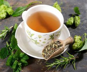 Какой травяной чай нужно пить перед сном?